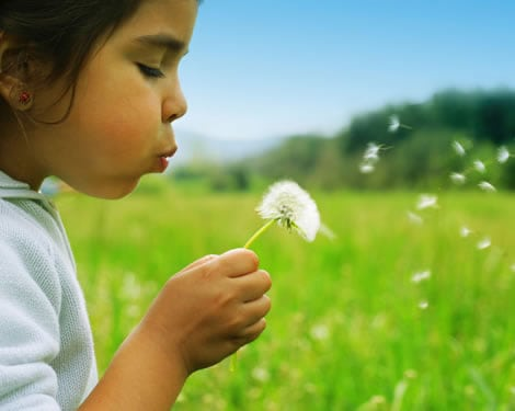 Tips for Reducing your Pollen Symptoms