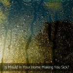 Is Mould In Your Home Making You Sick?
