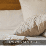 Is Your Pillow Full Of Mould?