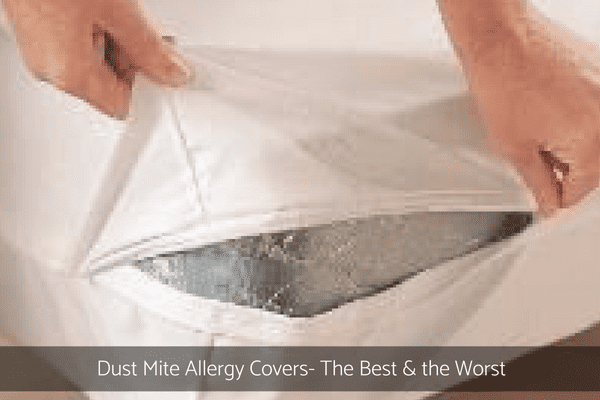 Dust Mite Allergy Covers
