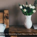 Prevent Dust Mites In Home