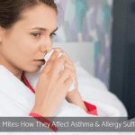 Dust Mites: How They Affect Asthma & Allergy Sufferers