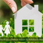 5 Effective Ways to Reduce Indoor Air Pollution in Your Home