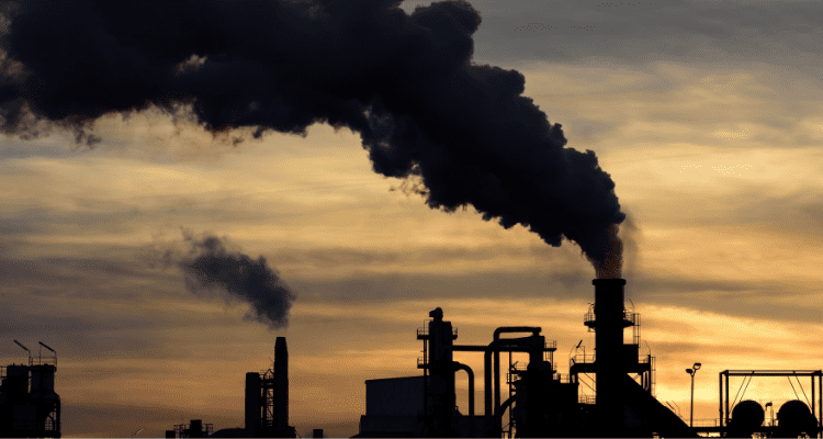 4 Simple Ways to Prevent Chemical Pollution in Your Home