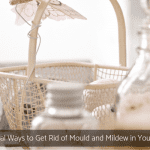 7 Natural Ways to Get Rid of Mould and Mildew in Your Home