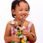 Pets for Children with Allergies