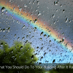 What You Should Do To Your Building After It Rains