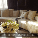 Should You Use Chemicals Indoors?