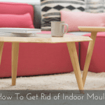 How to Get Rid of Indoor Mould