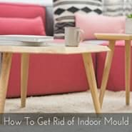 Get Rid of Indoor Mould