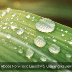 Abode Non-Toxic Laundry & Cleaning Review