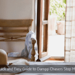 A Quick and Easy Guide to Dampp Chasers Stop Mould