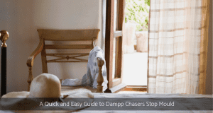 Stop Mould with Damp Chaser