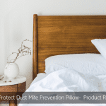 AllerProtect Dust Mite Prevention Pillow Product Review