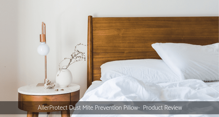 Dust Mite Pillow